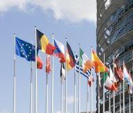 Supply Chain   Europe