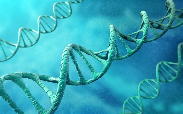 DNA-Blend