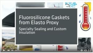 Fluorosilicone Gaskets